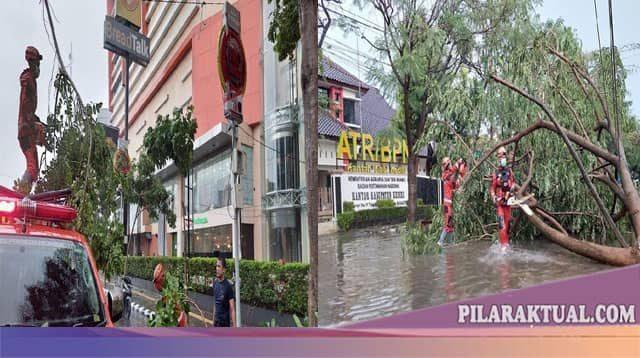 Hujan Lebat Disertai Angin Kencang Tumbangkan Belasan Pohon Besar di Kediri