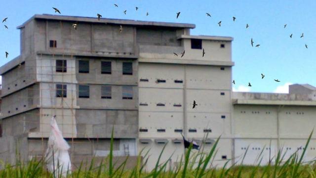 Sebagian Besar Bangunan Sarang Walet di Boltim Ilegal